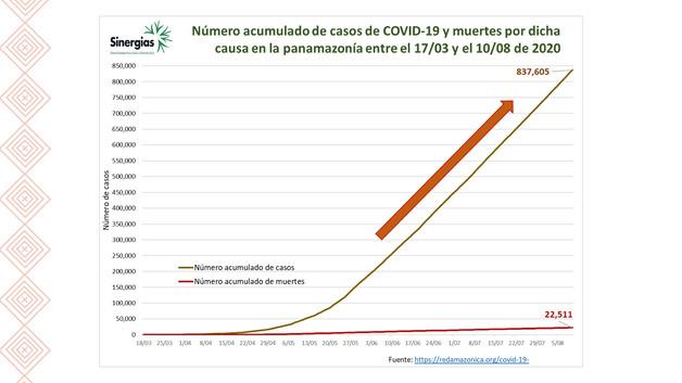 Número acumulado de casos de COVID-19 y muertes en la Panamazonía del 17/03/20 al 18/08/20