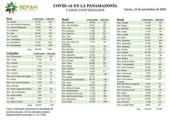 Casos confirmados en la panamazonía - 12/11/20