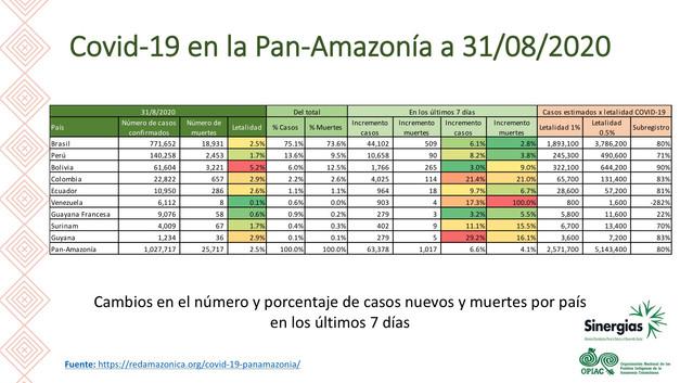 Covid-19 en la Pan-Amazonía a 31/08/2020