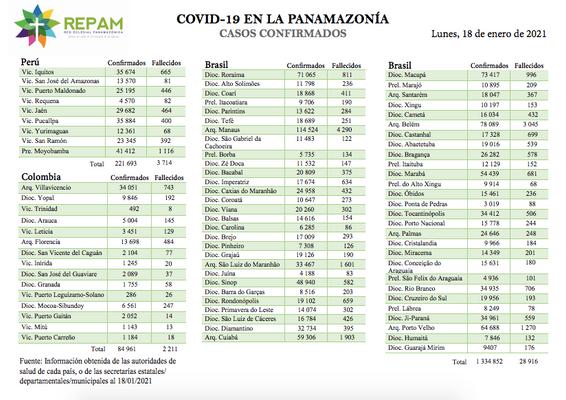Casos confirmados en la panamazonía - 18/01/21
