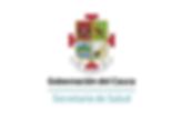 Gobernación_de_cauca.png