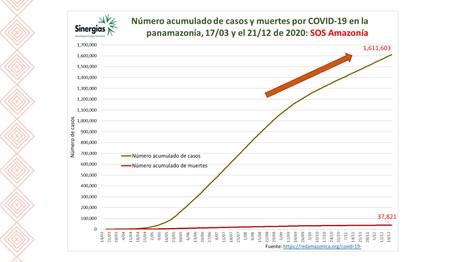 Número de casos acumulados y muertes por COVID19 en la pan-Amazonía