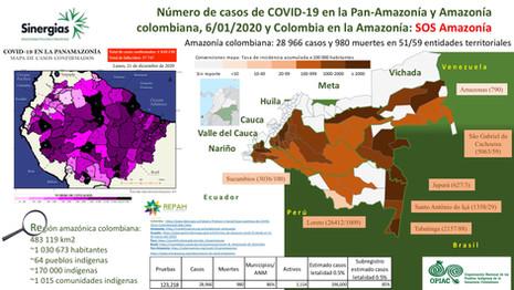 Mapa del número de casos por COVID19 en la pan-Amazonía y Amazonía colombiana