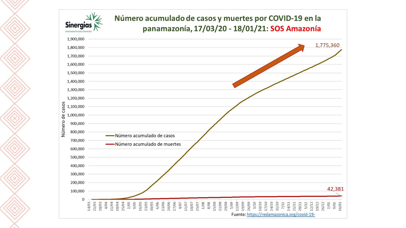 Número acumulado de casos y muerte por COVID19 en la Pan- Amazonía
