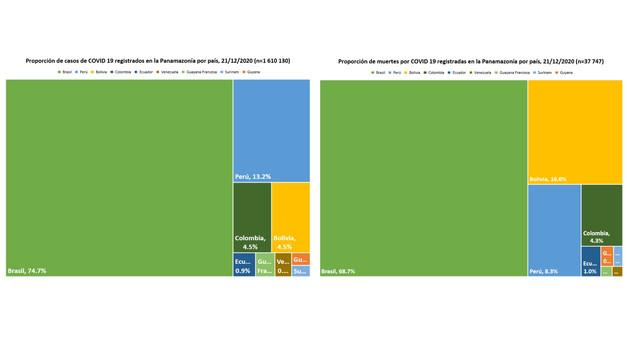 Proporción de casos y muertes por COVID19 en la región pan-Amazónica por país