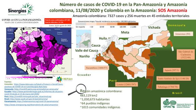 Número de casos de COVID-19 en la Panamazonía y Amazonía colombiana a 11/08/2020