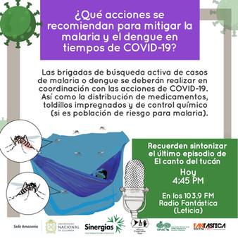 ¿Qué acciones se recomiendan para mitigar la malaria y el dengue en tiempos de COVID-19?