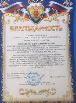 Лена П благод 2019