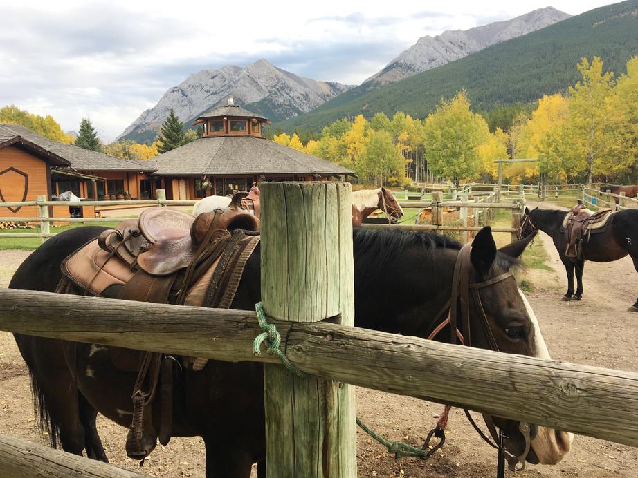 Horseback Riding at Boundary Ranch
