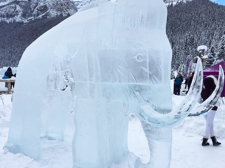 Visiting the Banff Ice Magic Festival