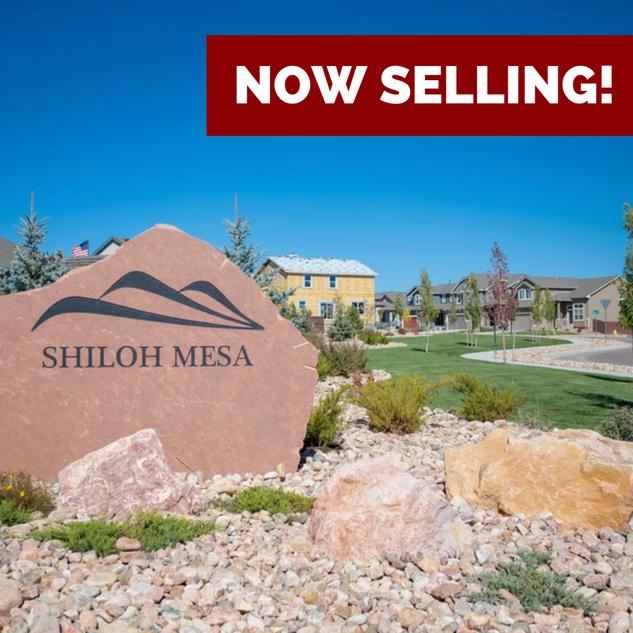 Enclave at Shiloh Mesa
