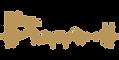 No background- GOLD Hidalgo County HC Logo.png
