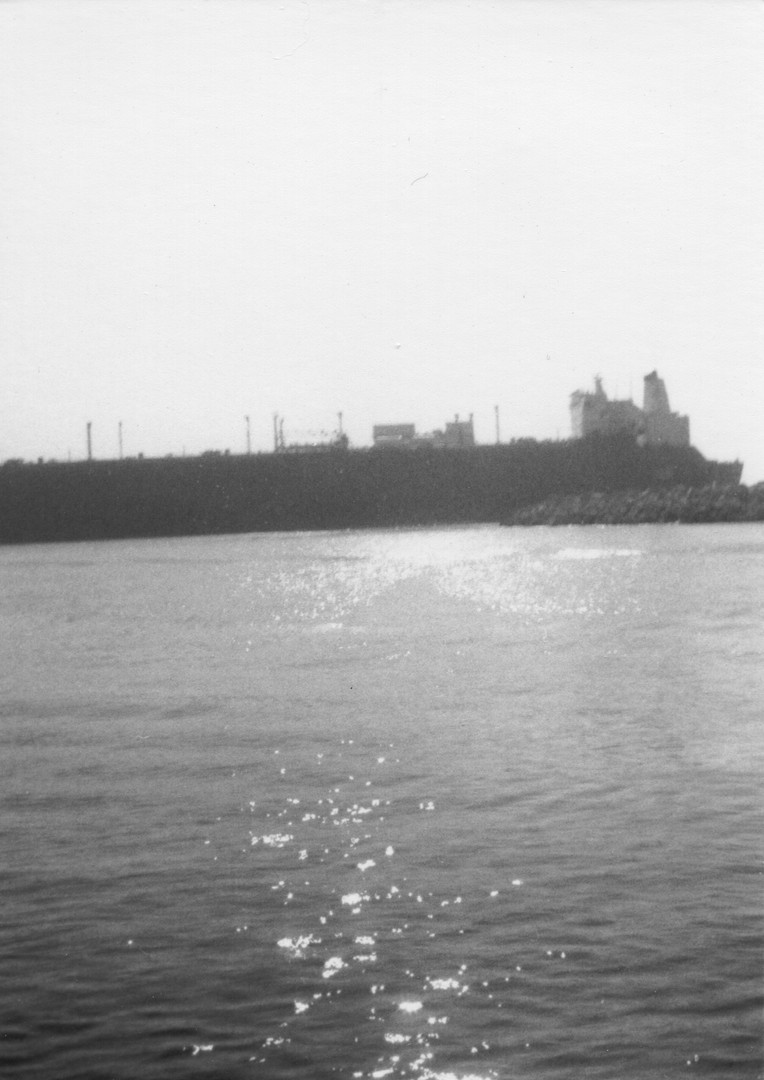 PAM 16.jpg
