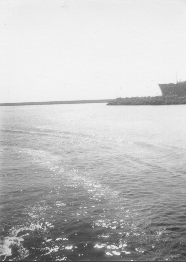 PAM 8.jpg