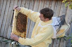 Markus besichtigt Bienen FotoloungeBlend