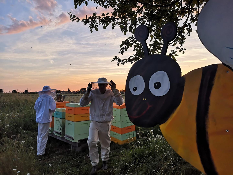Bienen.jpg