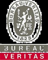 LogoBV2.png