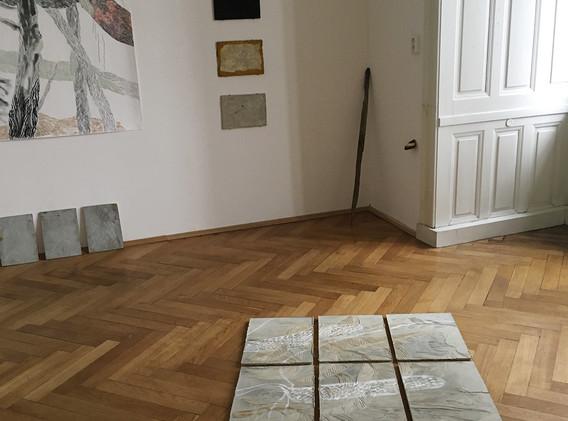 Monika Pascoe Mikyšková/Veronika Vlková, Jiří Švestka gallery