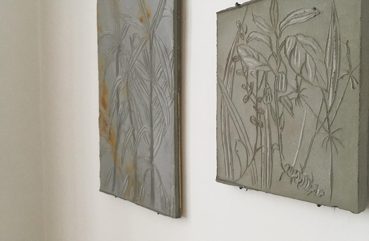 from the set Botany, Jiří Švestka gallery