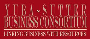 YSBC Logo Red background.jpg