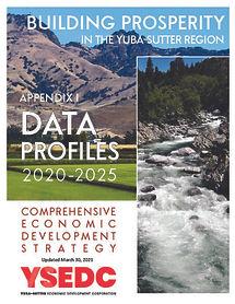 CEDS Appendix I Data Profiles 2021 COVER.jpg