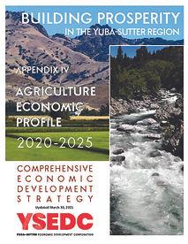 CEDS Appendix IV Agriculture Economic Profile 2021 COVER.jpg