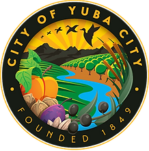 City of YC.png