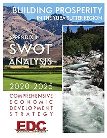 CEDS Appendix II SWOT Analysis COVER.jpg