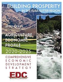 CEDS Appendix IV Agriculture Economic Pr