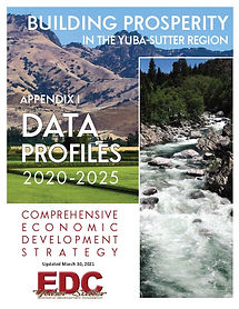 CEDS Appendix I Data Profiles 2021 COVER