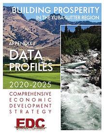 CEDS Appendix I Data Profiles COVER IMAG