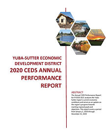 Final 2020 CEDS Performance and Update R