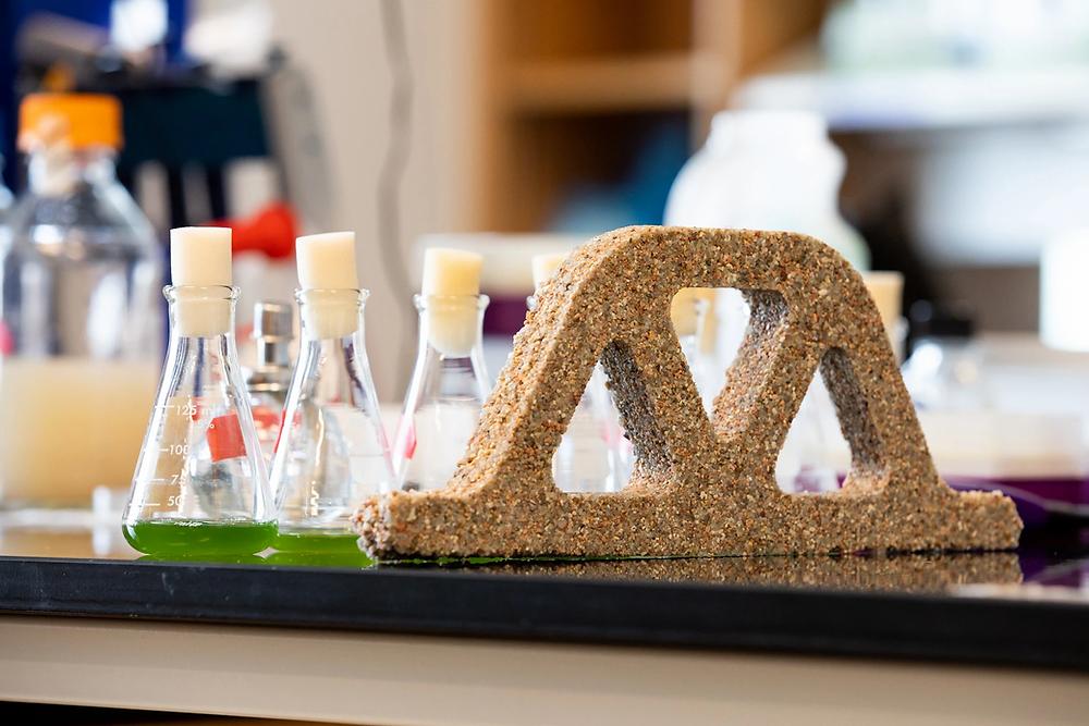 Ladrillo vivo, Científicos desarrollan concreto que se puede reproducir.