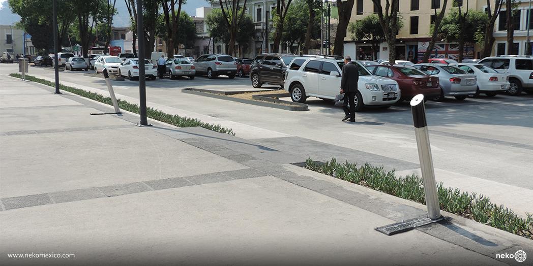Bebedero Monterrey 2