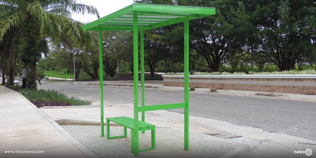 Parabus Toluca