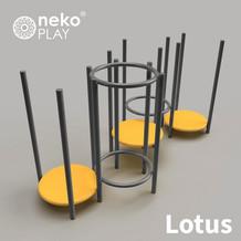lotus-aerea gris.jpg
