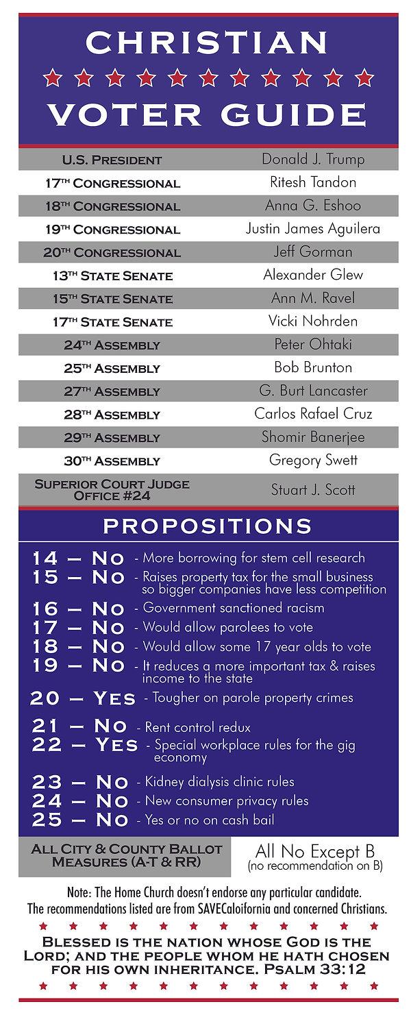 voter guide nov 2020 copy.jpg