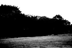 2011.10.07_01.jpg