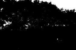 2011.10.07_03.jpg