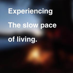 slow living 4.jpg