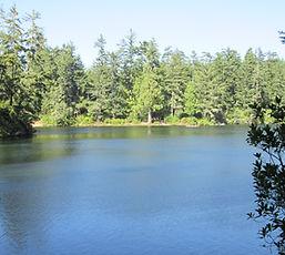 Lake Marie 2.JPG