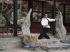 toledo bagua kung fu tai chi escuela hong kun