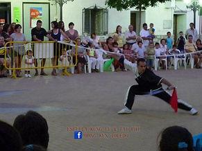 shaolin toledo escuela hong kun de kung fu y tai chi