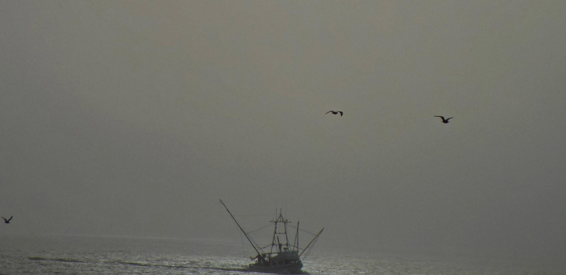 Fishing in fog.jpg