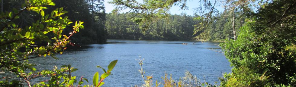 Lake Marie 4.JPG