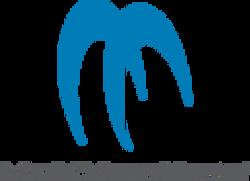 Maxxsonics logo