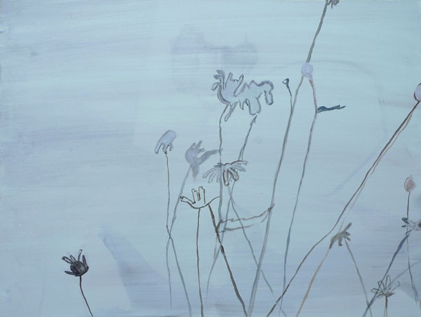 Daisies 2011