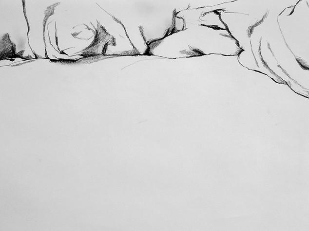 Left side of Bed 2 2013