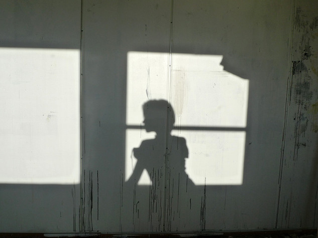 i just swallowed my own shadow 1 2010