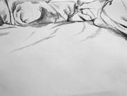 Left side of Bed 3 2013